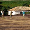 Natural Coffee Processing in Brazil